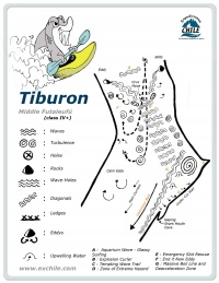 A detailed sketch illustrating the key kayak lines of Tiburon